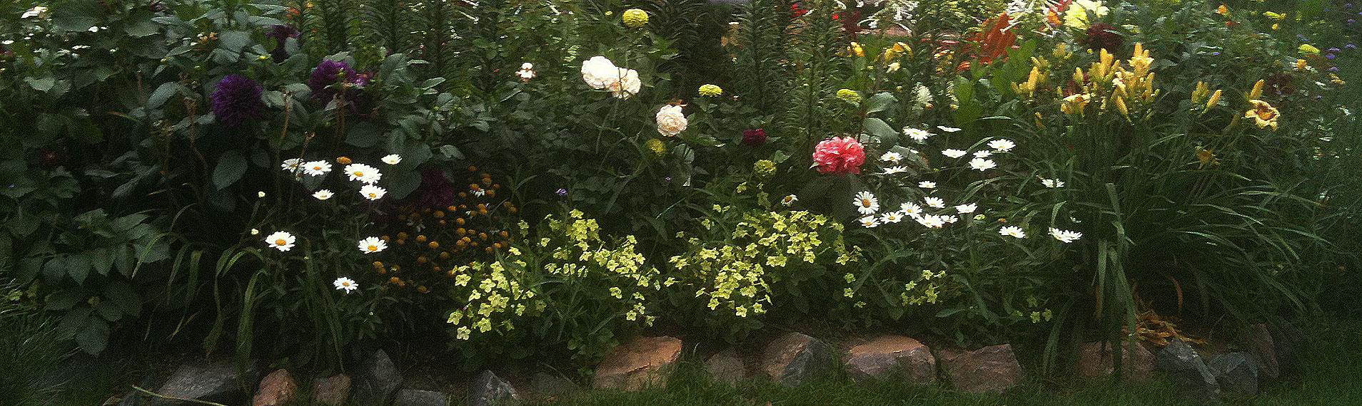 Another-rose-Garden